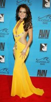 AVN+Awards+Mandalay+Bay+Arrivals+F6TlYyqYI7Wx
